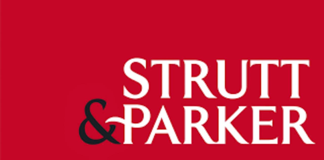 strut-parker
